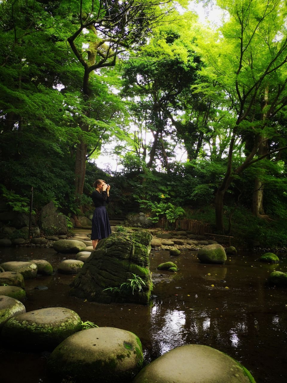 Compilation: Garden and parks in Tokyo